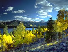 Don't miss out on the beauty! Best Places to See #FallColors in #ColoradoSprings & Beyond