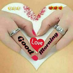 Latest good morning images with flowers ~ WhatsApp DP, Love DP, DP Images, WhatsApp DP For Girls Good Day Images, Lovely Good Morning Images, Good Morning Photos Download, Latest Good Morning Images, Cute Good Morning, Good Morning Picture, Morning Pictures, Morning Love Quotes, Good Morning Messages