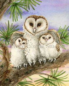 Owl Tree with Barn Owls archival watercolor by TracyLizotteStudios
