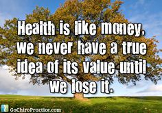 """""""Health is like money, we never have a true idea of its value until we lose it."""" ~Josh Billings Quote"""