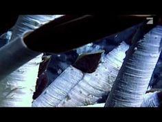 Doku : Deep Ocean-Gnadenlose Tiefe