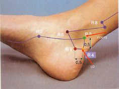 Acupuncture Points, Acupressure Points, Acupressure Treatment, Muscle Anatomy, Body Tissues, Massage Techniques, Chinese Medicine, Feet Care, Massage Therapy
