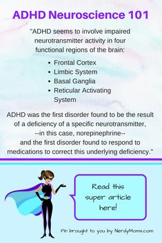 ADHD Adult Adhd And Limbic System