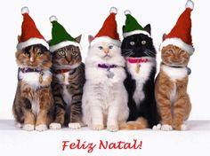 18 Melhores Imagens De Cartões De Natal Christmas Greetings