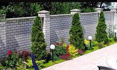 Front Yard Garden Design, Front Yard Decor, Garden Yard Ideas, Backyard Patio Designs, Small Garden Design, Arborvitae Landscaping, Front Yard Landscaping, Landscaping Around Pool, Evergreen Garden