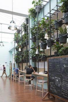 Lagranjaha diseñado la sede de Typeform,una start-up barcelonesa que está revolucionando las encuestas enInternet.