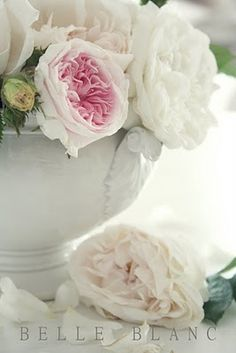 Peonie and rose
