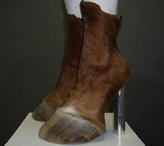 I would love to gallop around in a pair of these.