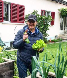 By kleintiereonline.de. . Salatüberschuss im Garten! Nach dem Motto Geschenke erhalten die Freundschaft informierten wir unseren Nachbarn. Dieser schätzt den frischen Kraussalat und die Radieschen.  Es heisst, dass der grüne Kraussalat resistent gegen die grüne Salatblattlaus und gegen den falschen Mehltau ist. . #salat #kraussalat #resistenz #salatblattlaus #mehltau #falschermehltau #humus #gartenboden #freilandsalat  #gewächshaussalat #salatkombinationen. . Wie verwerten Sie die… Motto, Friendship, Gifts, Mottos