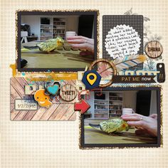 pet bird scrapbook page by Justine with The Lilypad products  #2photos
