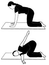 The twisted cat-my favorite yoga pose to do after work! It takes out all the knotted up feelings from underneath my should blades
