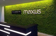 Preserved moss wall at Maxus