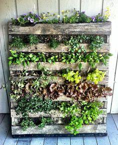 Deko Ideen Selbermachen Vertikaler Garten Pflanzenbehälter ... Vertikale Bepflanzung Ideen Tipps Garten