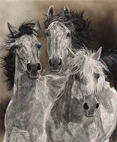 Native American Horse Drawings | Horse/Native - Painting - Nature Art by Judy Larson