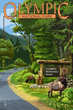 Park Entrance & Elk - Olympic National Park, Washington - Lantern Press Poster