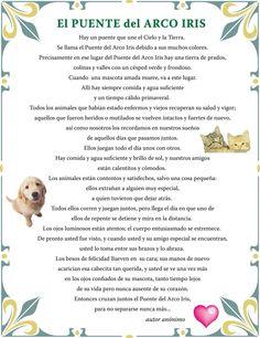 PDF LAS DE EDMOND JABES EL PREGUNTAS LIBRO