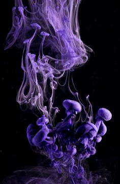 Underwater Ink Photography by Luka Klikovac Purple Haze, Shades Of Purple, Purple And Black, Purple Colors, Purple Themes, Periwinkle, Abstract Photography, Color Photography, Digital Photography