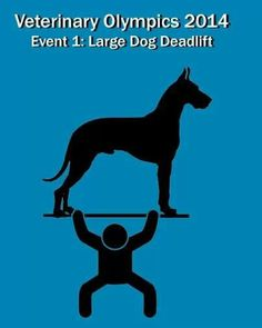Veterinary olympics. Perfect for a vet tech. Large dog dead lift #funny as a person with a big dog at home this is easy lol