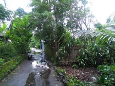 Rumah Dijual Murangan Yogyakarta Dekat Polres Sleman Siap Bangun 1