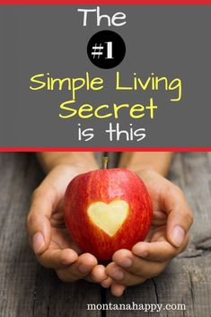 The Number One Simple Living Secret is This will let you in on the one idea that can transform your life into the one you've always dreamed about. Frugal Living Tips, Frugal Tips, Simple Life Quotes, Best Blogs, Self Development, Personal Development, Feeling Overwhelmed, Family Traditions, Positive Mindset