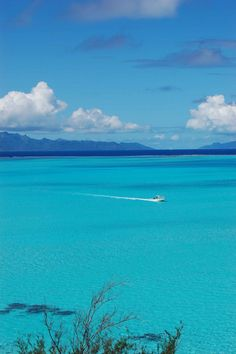 Bora Bora, motu Piti Uu Tai | Flickr - Photo Sharing!