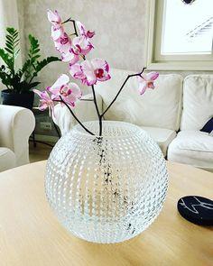 My new vase. Souvenir from Sweden. #scandinavian #swedish#mio #mioinredning #miosverige #vase #new #orchid #orkidea #vaasi #uusi #loveit#nordic #nordichome #flower#interior125 #instahome #homestyle #sisustus#sisustusinspiraatio