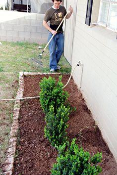 32 Best Gardens Images Garden Borders Garden Edging