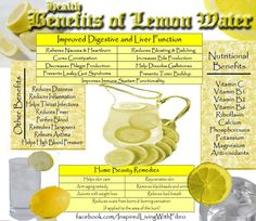 Health Benefits of Lemon Water from My Inspired Life with Fibromyalgia Lemon Water Cleanse, Lemon Water Diet, Lemon Water Benefits, Lemon Health Benefits, Drinking Lemon Water, How To Relieve Nausea, Leaky Gut Syndrome, Reduce Bloating, Health