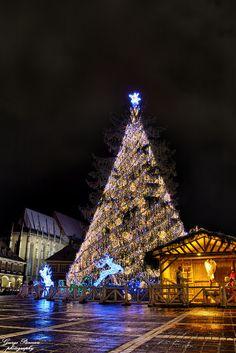 Holiday spirit...   Flickr - Photo Sharing! - Piata Sfatului - Brasov, Romania