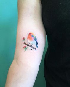 Watercolor bird by Briana Robinson