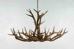 the beautiful shelter: Antlers and Architect's Desks
