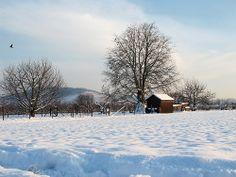 Goodbye Winter - http://www.1pic4u.com/2014/05/12/goodbye-winter/