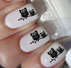 I'm A Hoot - Owl Nail Art Transfer Decal - An owl on a few nails would be better. Owl Nail Art, Bird Nail Art, Owl Nails, Nail Polish Art, Owl Nail Designs, Cute Nails, Pretty Nails, Valentine Nail Art, Nagel Gel