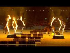 Highlights from the equestrian displays at Olympia, The London International Horse Show