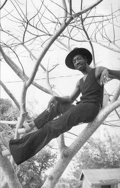 The Golden Age of Reggae : All photos by Kim Gottlieb-Walker #banditblog