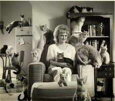 Choco Toujours: Vintage Cat Lady