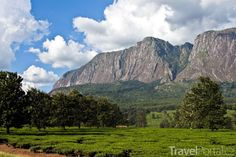 Pohoří Mulanje. In A Heartbeat, Tanzania, Continents, Wilderness, Statues, Places To Go, National Parks, Africa, Mountains