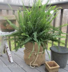 Wrap a 5 gallon bucket in burlap for a cool, easy and cheap pot...(my blog)