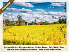 Kunst vom Feld: Farbenflut – www.kunstvomfeld.de