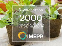 PRIMER REGALO Nuestro seguidor no. 2000 se llevará un kit de siembra para iniciar con su huerto en casa. Nos faltan solo 48 likes!