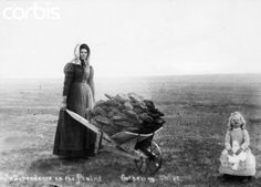 A pioneer woman and child gather buffalo chips for fuel for the evening campfire