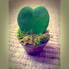 Cuore verde.