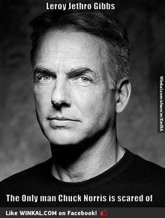 Mark Harmon- love me some Gibbs!! :)