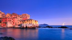 Bing Image Archive: Christmas tree in the village of Boccadasse, Italy (© Davide Carlo United States) Italian Christmas, Christmas Tree, Bing Backgrounds, Beautiful Homes, Beautiful Places, Italy Images, Wallpaper Gallery, Wallpaper Designs, Waterfront Homes