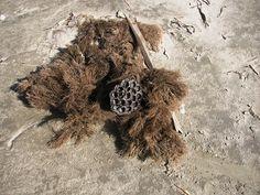Galveston Texas Dried Bryozoan Moss  Ferns by TheIDconnection, $8.00