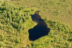 Suomen muotoinen järvi - elinkeino ilmakuva järvi kesä maanmuoto maisema Suomi vesi tekojärvi muoto metsä