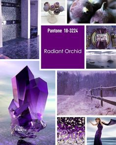 Radiant Orchid Mood Board by UK Academy of Wedding and Event Planning  www.weddingplanningacademy.co.uk
