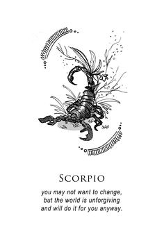 illustration and inanity by amrit brar — - the artwork on this version of star signs is really amazing Scorpio Art, Astrology Scorpio, Zodiac Signs Scorpio, Scorpio Quotes, Scorpio Woman, Horoscope Signs, Pisces, Elf Rogue, Scorpio Season
