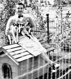 0 John Gilbert with 2 puppies and 1 cat Golden Age Of Hollywood, Vintage Hollywood, Hollywood Stars, Classic Hollywood, Gilbert Roland, John Gilbert, Silent Film Stars, Classic Movie Stars, Vintage Dog