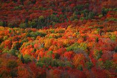 The overlook on Lutsen Mountain, MN, US